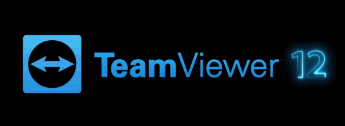 TeamViewer 12 para Windows 10